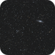 Wide field on NGC7331,                                OrionRider