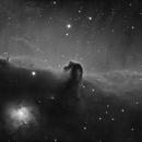 The Horsehead Nebula (HaL),                                Andreas Eleftheriou