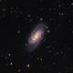 NGC 2903,                                Robert Eder