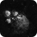 NGC 6334- Cat's Pow Nebula,                                Gerson Pinto