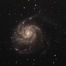 M101 The Pinwheel Galaxy,                                Walter Torres