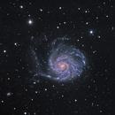 M101 - The Pinwheel Galaxy in Ursa Major,                                CrestwoodSky