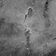 IC 1396 - Elephant Trunk Nebula Mosaic in Ha,                                Marco Failli