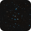 M44 - The Beehive Cluster,                                Tim Hutchison