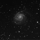 M101,                                Patric Benedetti