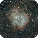 Rosette Nebula,                                Mike Coates