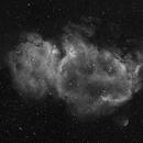 Soul Nebula,                                Paulo  Lobao