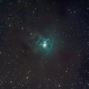 NGC7023 - The Iris Nebula,                                BrunoD