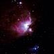 Orion Nebula,                                Isonicrider