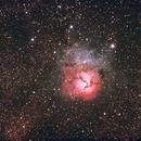 The Trifid nebula (M20),                                Sergio Alessandrelli