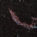 NGC6992,                                Timo Walter
