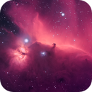 Horse Head, Flame & Running Man Nebula,                                Abdulla Almesleh