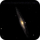 NGC 4216 - a cosmic cannibal,                                Tom Gray