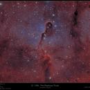 IC 1396 - The Elephants Trunk,                                Frank Schmitz
