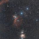 Nébuleuses de la constellation d'Orion (grand champ),                                Laurent3112