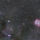 Rosette and Cone Nebula,                                mcofield