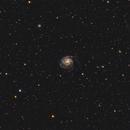 M101 Pinwheel Galaxy,                                Richard Xiong