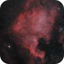 First Light - North American Nebula,                                Riju Banerjee
