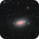 M63 - the Sunflower Galaxy,                    Bart Delsaert