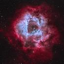 The Rosette Nebula in HOO,                                Tyler Millhouse