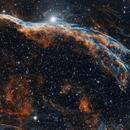 Veil Nebula (Broom),                                Tim Trentadue