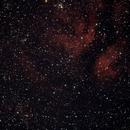 IC 1318 Butterfly Nebula,                                Lighthunter