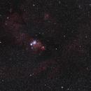 NGC 2264 area,                    Scotty Bishop