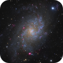 M 33,                                Mike Miller