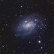 NGC 300 LRGB,                                  Andy