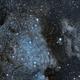 North America & Pelican Nebulae,                                Pierre D.