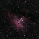M16,                                ursus