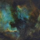 NGC7000 North America nebula 2-panel mosaic,                                GooE