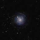 NGC3344,                                AstroGG