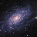 NGC2403 - NAOJ/ESA/NASA - R. Colombari / R. Gendler,                    Roberto Colombari