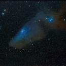 The Blue Horsehead,                                PatrickE