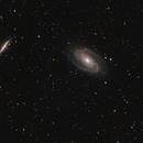 Bode Galaxy,                                Firstround