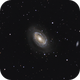 NGC 4725, The One-Armed Galaxy,                                Steven Bellavia