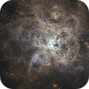 NGC2070 - Tarantula Nebula,                                Janco