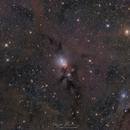 Eye of The Beholder ( NGC 1333 ),                                Reza Hakimi