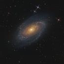 Galaxia de Bode, Messier 81,                                Astrofotografia A.R.B.