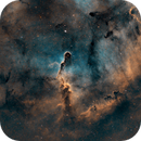 IC1396 - SHO,                                Giulio