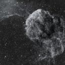 IC 443 The Jellyfish Nebula,                                Wes Higgins