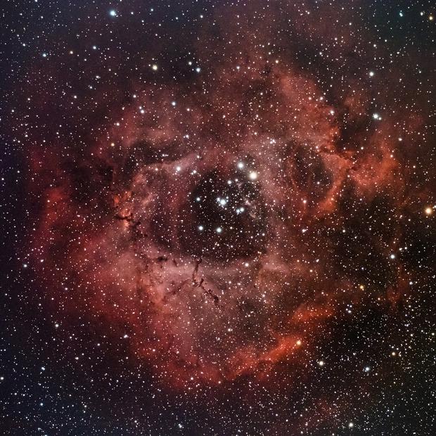 Rosette Nebula (Caldwell 49),                                dswtan