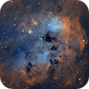 IC410 - Tadpoles in SHO,                                Davide Coverta