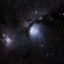M78 Reflection Nebula,                                Nicholas Jones