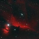 Barnard 33 - Horsehead Nebula,                                Mike Rinaldi