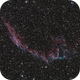 NGC6995 80ED 600D,                                Olivier_aix