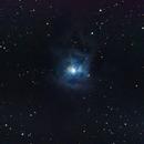 Iris Nebula (Caldwell 4),                                Nathan Long