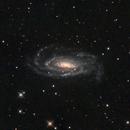 NGC 5033,                                Torben van Hees
