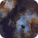 Butterfly Nebula (IC 1318) in the Hubble Palette,                    Chuck's Astrophot...